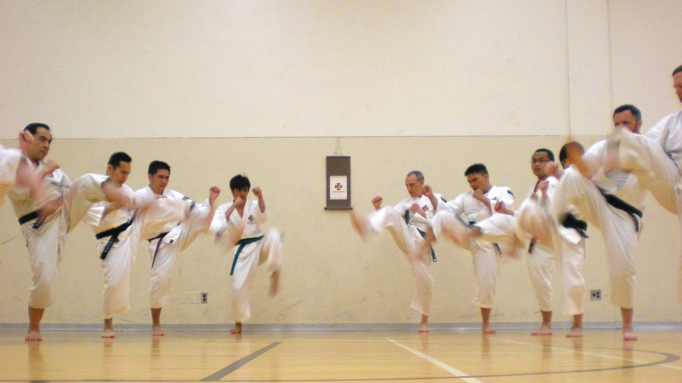 People in a row doing karate