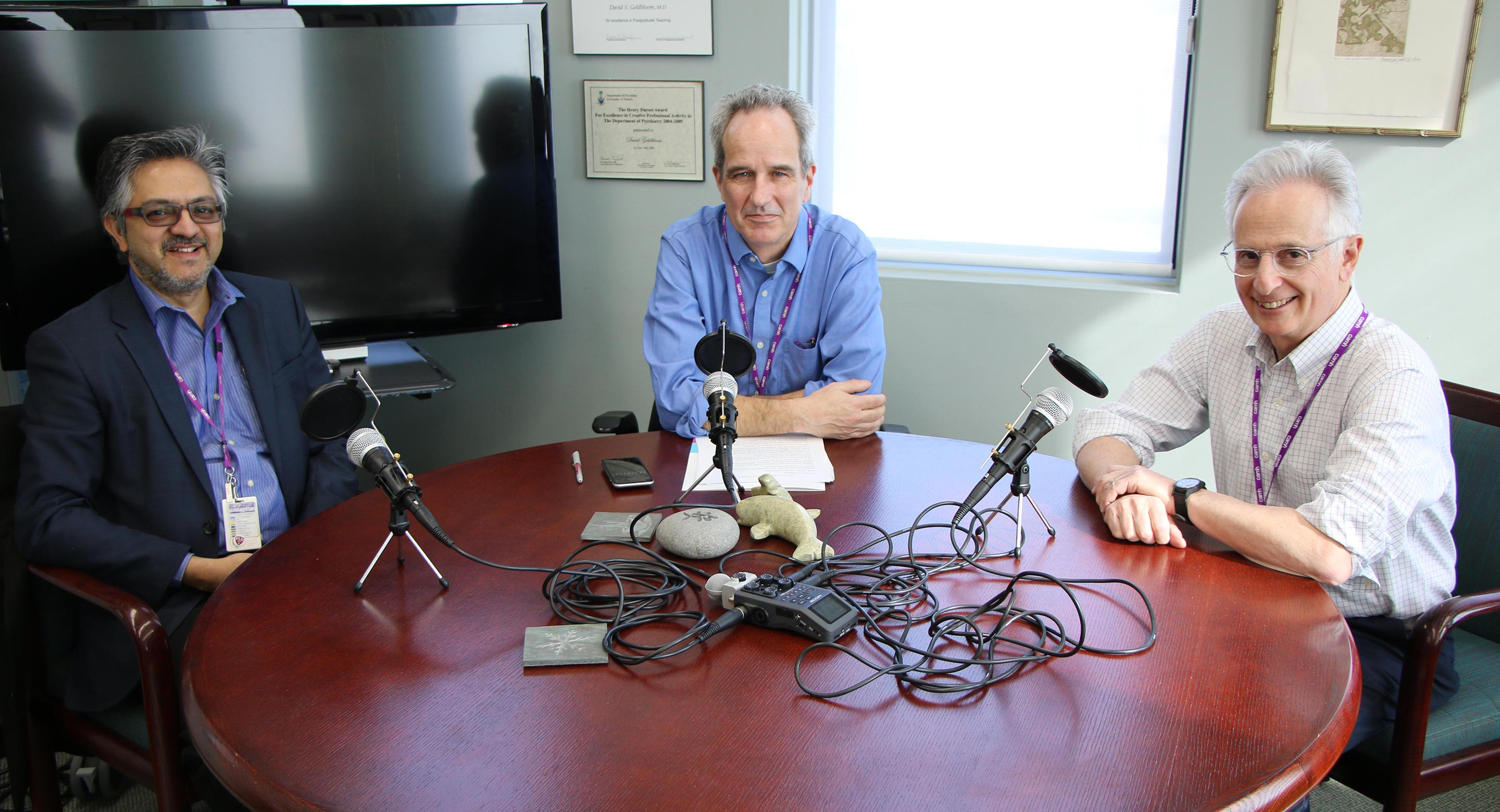 Dr. Peter Selby podcast with Sean O'Malley and Dr. David Goldbloom